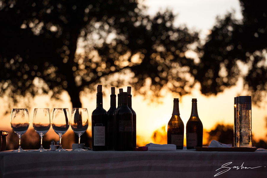 wine bottles at sunset
